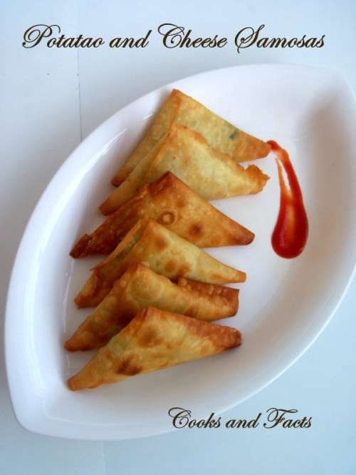 Potato and cheese samosa