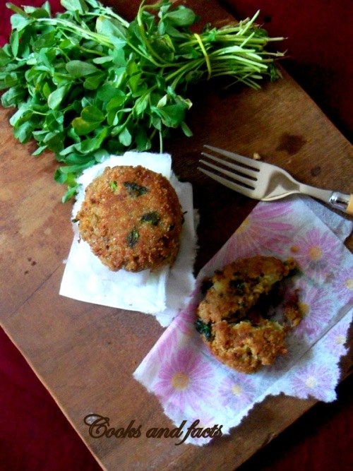 soya and methi patties